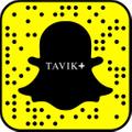Tavik Logo