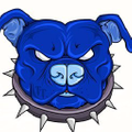 Tenacious Toys® Logo