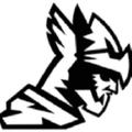 BarbarianBody logo