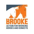 Brooke Shop UK Logo
