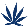The Budgrower logo