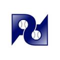 Prospect Dugout USA Logo