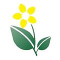 Theemporiumdirect Logo