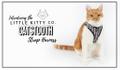 LITTLE KITTY CO Logo