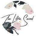 The Little Secret Boutique logo