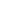 The Luxe Lens Logo