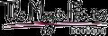 The Magic Fairies logo