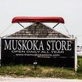 The Muskoka Store Logo