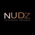 Nudz USA Logo