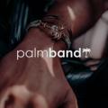The Palmband Logo