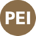The Professional Education Institute Logo