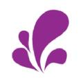 The Purple Puddle logo