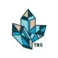 The Rising States Logo