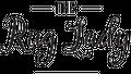 The Rug Lady Logo