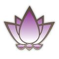 The Sol Shine logo