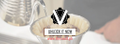 thevault.ph Logo