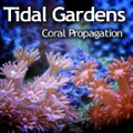 Tidal Gardens Logo