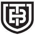 Titanium-Buzz USA Logo