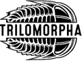 TRILOMORPHA logo