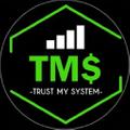 Trust My System Logo