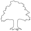 The Same Direction Logo