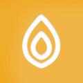 Turmerical Logo