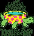 Turtle's Soup logo