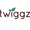 Twiggz Logo