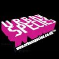 urbanspecies Logo