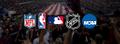 Us Sports Down Under logo