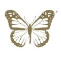 Vanessa Megan Skincare Logo