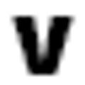 VPGNS Logo