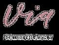 Via Calligraphy Logo