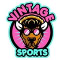 Vintage Buffalo Sports USA Logo
