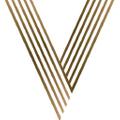 Virgin Hair And Beauty Logo