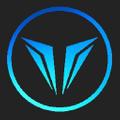 Vision Lacrosse Logo