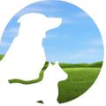 Vitality Science Logo