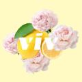 viv for your v logo
