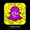 Voluptuous Logo