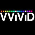 Vvivid Vinyls Logo
