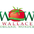 Wallace Wow Logo