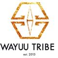 WAYUU TRIBE STORE Logo