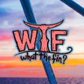 What the Fin Apparel Logo