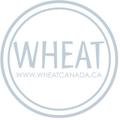 Wheat Kids Clothing Logo