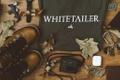 Whitetailer Logo