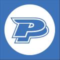 wholesale.painfulpleasures Logo