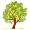 Wholesale Nursery Logo