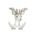 WildLittleFawns Logo