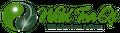 Wild Tea Qi Official Website Logo