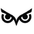 Wise Auto Tools USA Logo